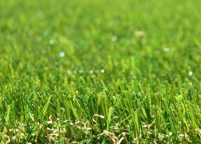 exbury - Artificial Grass