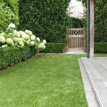 lifestyle - Artificial Grass