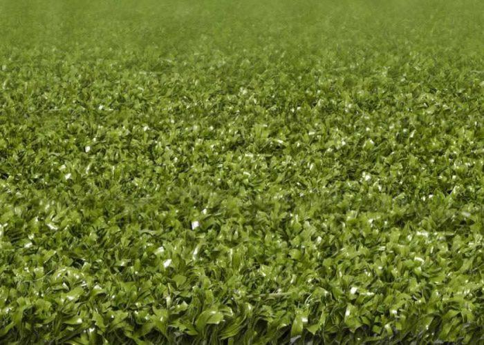 play - Artificial Grass