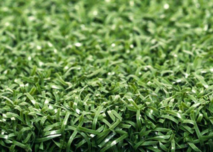 proputt - Artificial Grass