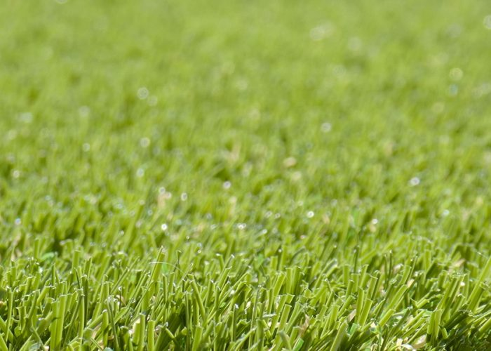 sway - Artificial Grass
